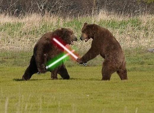 BearsWithSwordsSMALL