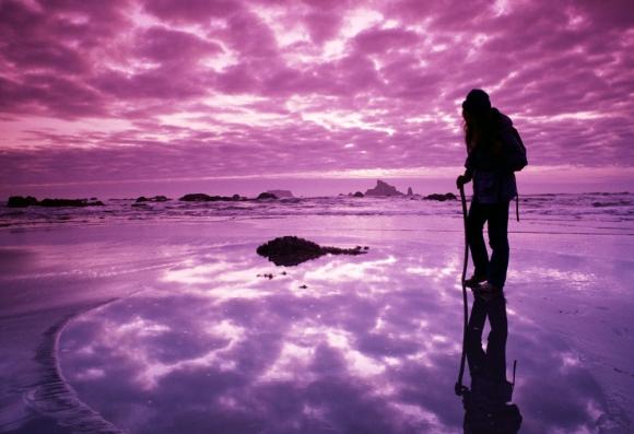 violet-life-journey1
